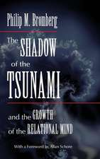 The Shadow of the Tsunami and the Growth of the Relational Mind:  A Practical Guide to Randomization Tests, Second Edition