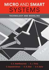 Micro and Smart Systems: Technology and Modeling