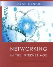Networking in the Internet Age