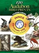 120 Audubon Bird Prints