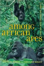 Among African Apes – Stories and Photos from the Field
