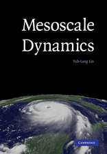 Mesoscale Dynamics