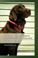 Kodiak ... A Chocolate Labrador Retriever and my best friend