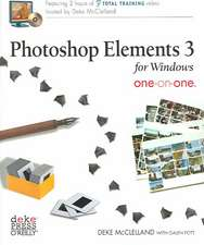 Photoshop Elements 3 for Windows One-On-One [With CDROM]:  The Missing Manual