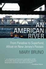 An American River