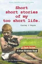 Short Short Stories of My Too Short Life