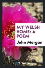 My Welsh Home