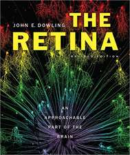 The Retina – An Approachable Part of the Brain, Revised Edition
