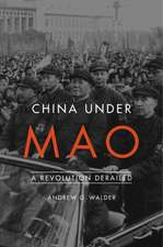 China Under Mao – A Revolution Derailed