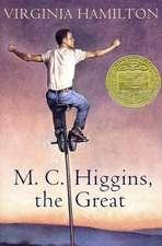 M.C. Higgins, the Great