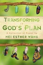 Transforming in God's Plan