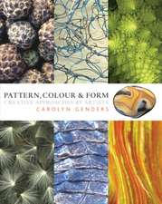 Pattern, Colour & Form: creative approaches by artists
