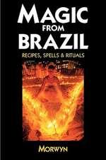 Magic from Brazil:  Recipes, Spells & Rituals