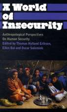 A World of Insecurity: Anthropological Perspectives on Human Security