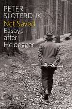 Not Saved: Essays After Heidegger