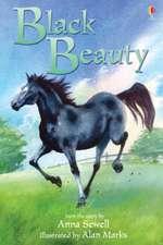 Sewell, A: Black Beauty