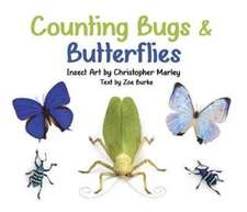 Counting Bugs & Butterflies