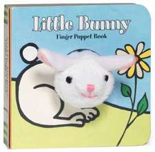 Little Bunny Finger Puppet Book [With Finger Puppet]:  The Hidden Fantasy Rooms of Japan