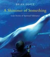 Shimmer of Something:  Lean Stories of Spiritual Substance