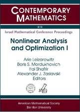 Leizarowitz, A:  Nonlinear Analysis and Optimization I