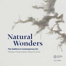 Natural Wonders: The Sublime in Contemporary Art: Thirteen Artists Explore Nature's Limits