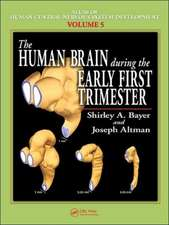 The Human Brain During the Early First Trimester:  Colonization Processes and Defenses