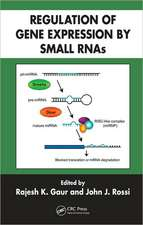 Regulation of Gene Expression by Small RNAs