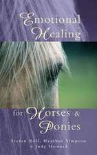 Emotional Healing for Horses & Ponies:  A Parent's Guide to the Treatment of Common Childhood Illnesses