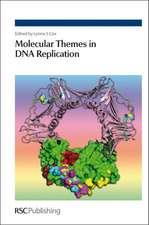 Molecular Themes in DNA Replication:  Rsc