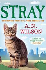 Wilson, A: Stray