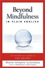 Beyond Mindfulness in Plain English