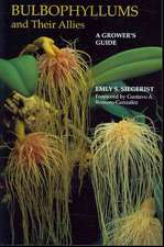 Bulbophyllums and Their Allies