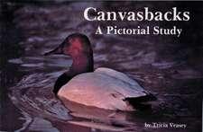 Canvasbacks