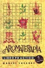 Aromatherapy Workbook:  Contemporary Awakens the Past