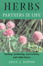 Herbs:  Healing, Gardening, and Cooking with Wild Plants