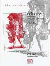 Irish Tunes - Volume One (Easy/Intermediate)