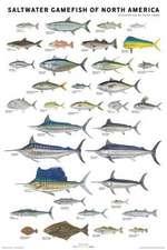 Saltwater Gamefish of North America Poster