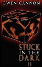 Stuck in the Dark II