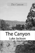 The Canyon:  A Paul Anders Mystery