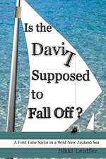 Is the Davit Supposed to Fall Off?