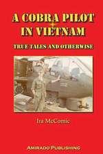 A Cobra Pilot in Vietnam