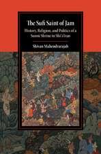 The Sufi Saint of Jam: History, Religion, and Politics of a Sunni Shrine in Shi'i Iran