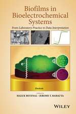 Biofilms in Bioelectrochemical Systems: From Laboratory Practice to Data Interpretation