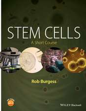 Stem Cells: A Short Course