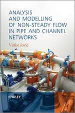 Analysis and Modelling of Non–Steady Flow in Pipe and Channel Networks