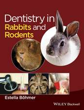 Dentistry in Rabbits and Rodents