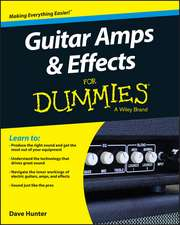 Guitar Amps & Effects for Dummies:  Using Talent Management to Achieve Competitive Advantage in Global Organizations