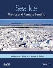 Sea Ice: Physics and Remote Sensing