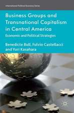 Business Groups and Transnational Capitalism in Central America: Economic and Political Strategies