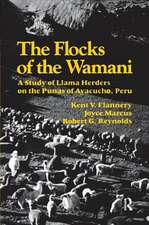 Flocks of the Wamani